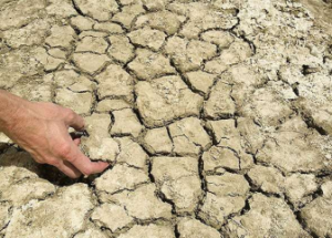 Testing for Sodium in Agricultural Soils